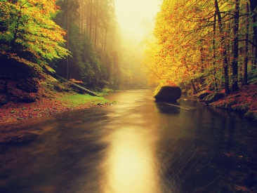 Evening autumn mountain river in orange mist.